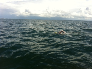 Mid Swim